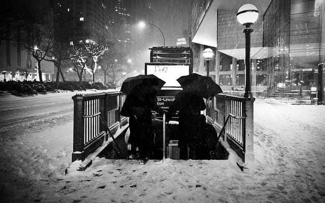 evocates:  Blizzageddon by friskypics on Flickr.