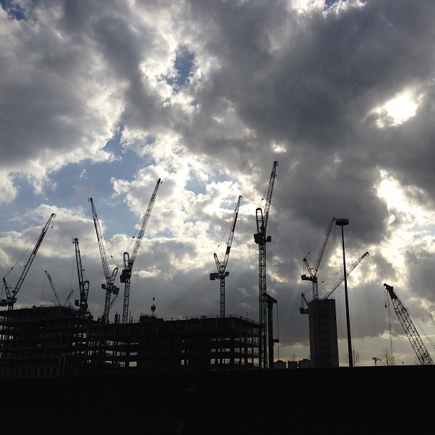 Cranes.  (at Kings Place)