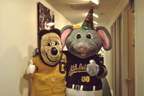 Happy birthday to our very own Stomper who turns 16 today!
