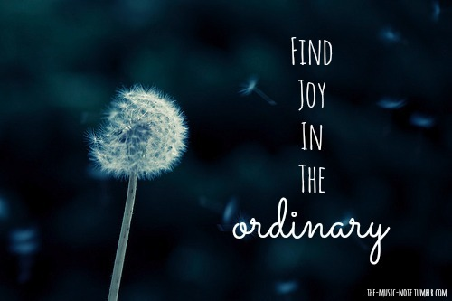 Find joy even in the ordinary…
