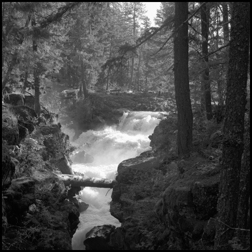 Morning Light - Rogue River Gorge - Oregon Yashica Mat 124G + Tmax 100 Black and White Negative Film Photography by Harry Snowden