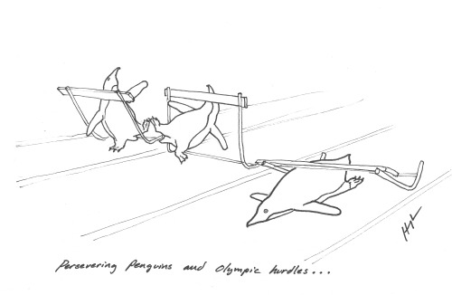 Persevering Penguins and Olympic hurdles… #perseveringpenguins #TRexTrying I drew this today and it made me laugh so I decided to share it with you.