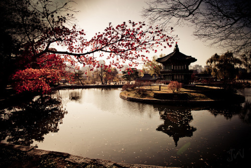 dreams-of-japan:  Korea by ~Jin Han ~ on Flickr.