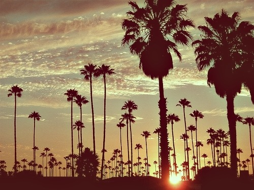 iamcrazybutiamfree:  beach | Tumblr en We Heart It. http://weheartit.com/entry/59250333/via/karolyte111