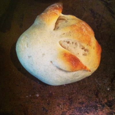 thisisnthelpful:  Baguette bread bunz  Was it supposed to be a bunny, or fallopian tubes?