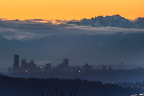 abiesgrandis:  seattle skyline from issaquah highlands, washington  this. this is exactly why i left the midwest.