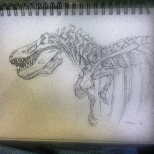 #sketch day at the museum of natural history #dinosaur #tyrannosaurus