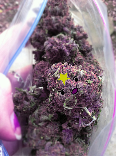 aliebay-dreams:  mojosodope178:  mary-jane-wanna:  OH…MY…GLOB   i know you wanna smoke these lumps  weed+adventure time+tumblr= ^^^