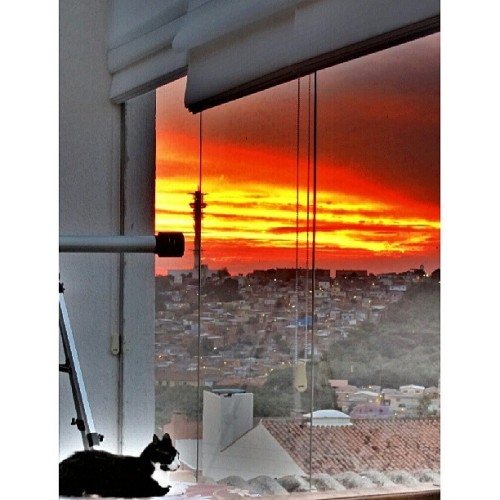 break time! #sunset → #PortoAlegre #Brazil #cute #cat (at Morro Santa Teresa)