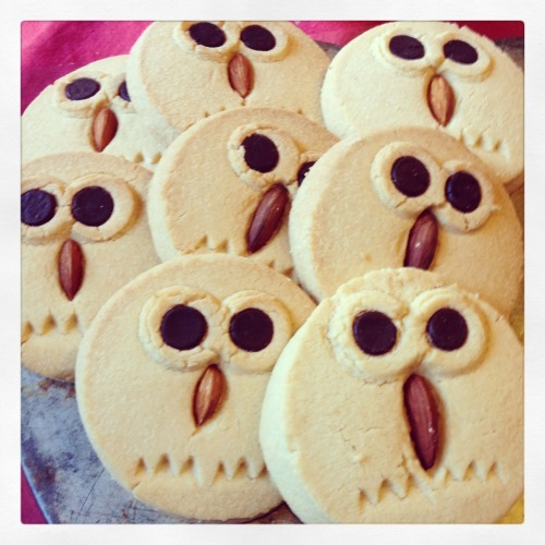 Shortbread owls with almond beaks and chocolate eyes
