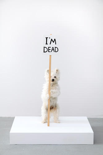 David Shrigley I'm Dead 2011 Taxidermy puppy with wooden sign and acrylic paint 36 x 28 x 28 inches