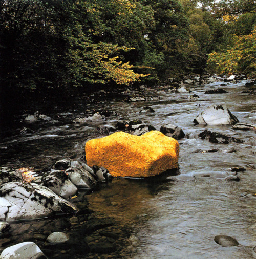 museumuesum:  Andy Goldsworthy   Yellow Elm Leaves Laid over a Rock, Low Water  October 15, 1991 Scaur Water, Dumfriesshire, Scotland.