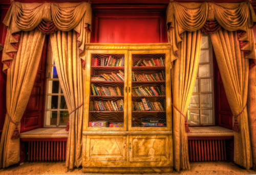 teachingliteracy:  book case (by ArtHakker Photography HDR)