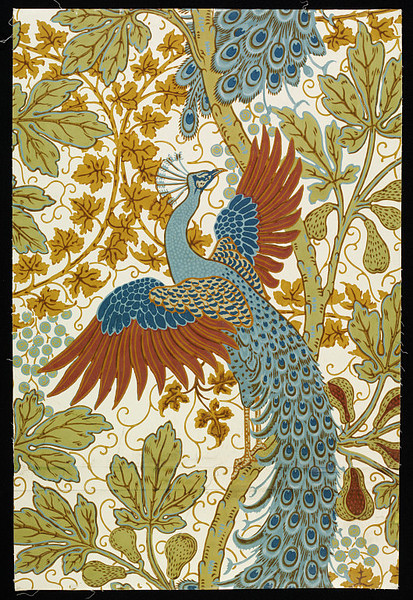 fuckyeahvintageillustration:  oldpainting:  Walter Crane, Fig and Peacock, 1895  Portion of 'Fig and Peacock' wallpaper, a design of peacocks amongst the foliage of fig trees, on a pale ground; Colour woodblock print on paper; Produced by Jeffrey & Co. (Source)