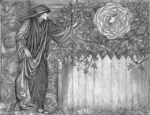 funeral-wreaths:  Edward Burne-Jones, 'The Heart of the Rose', an illustration of Chaucer's The Romaunt of the Rose, 1881
