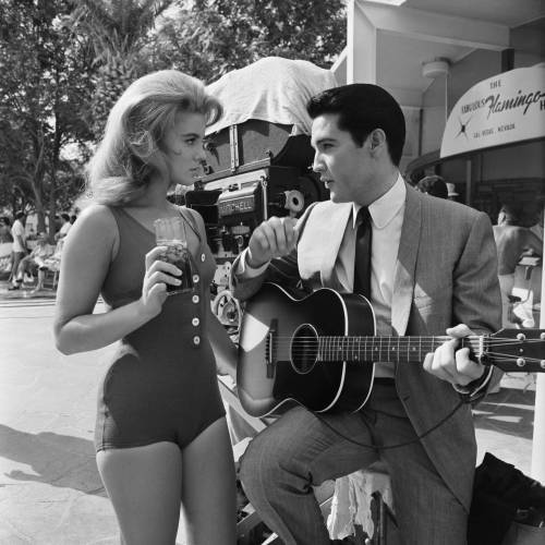"mikejrtaylor:  ""I'm kind of a big deal""  - Ann Margret & Elvis Presley on the set of Viva Las Vegas, 1964"