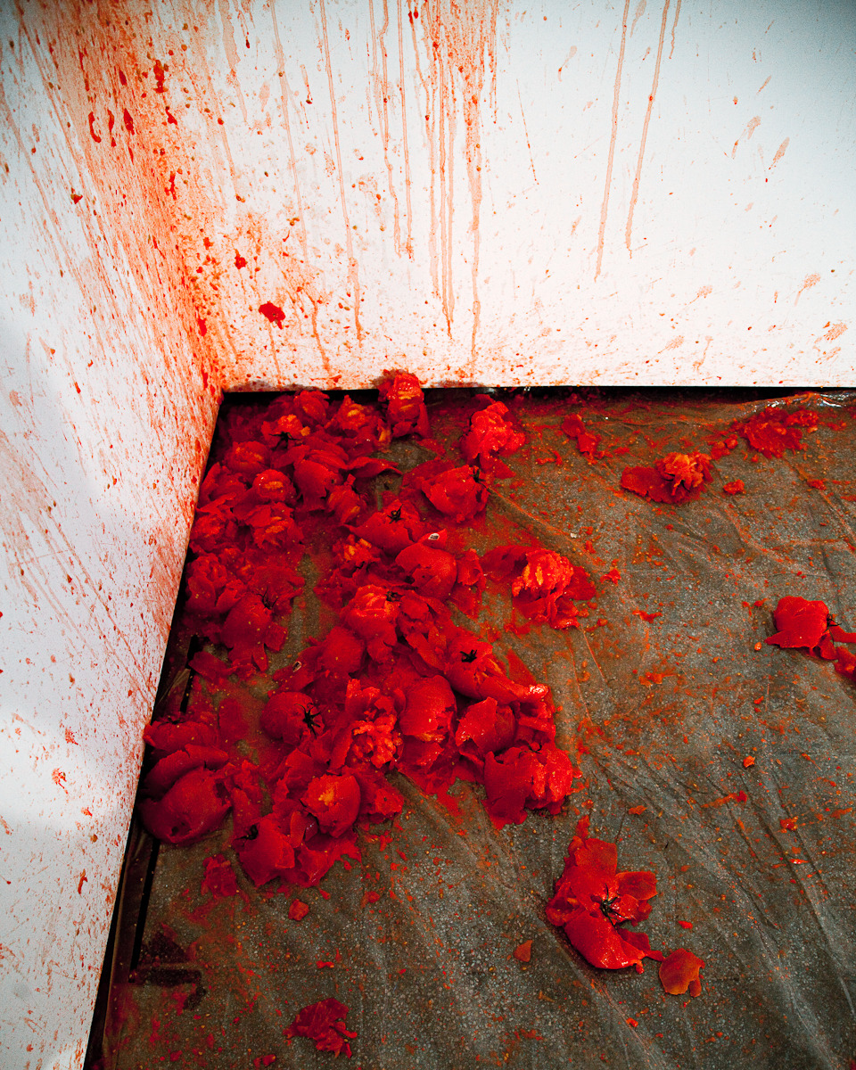 Los Carpinteros, Tomates (installation) Photography by Thea Goldberg