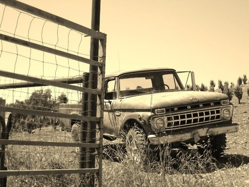 nfrdream:  Ford truck