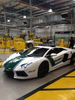 vistale:  Dubai Police Interceptor | via