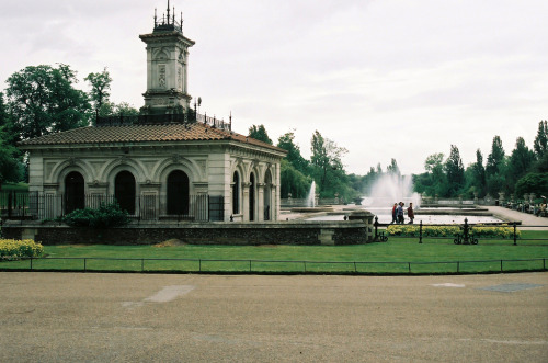 21vines:  hyde park (by bendisdonc)