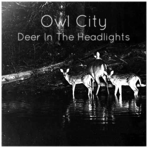 snowfoxofglaciercoast:  My alternative album cover for Deer In The Headlights - Owl City