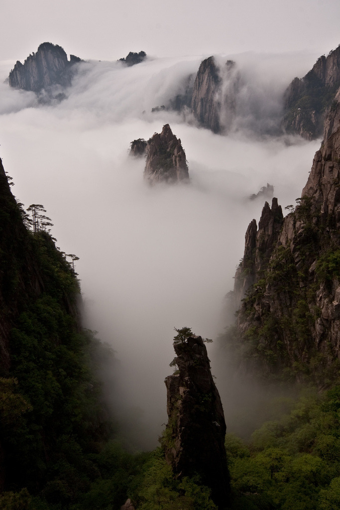 refluent:  Huang Shan - cloud and mountain wonderland (by Raphael Bick)