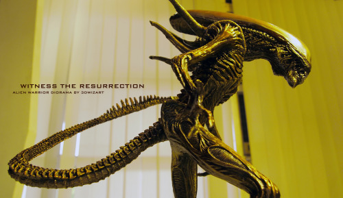 17″ Polystone Alien Warrior by FUVL on deviantART