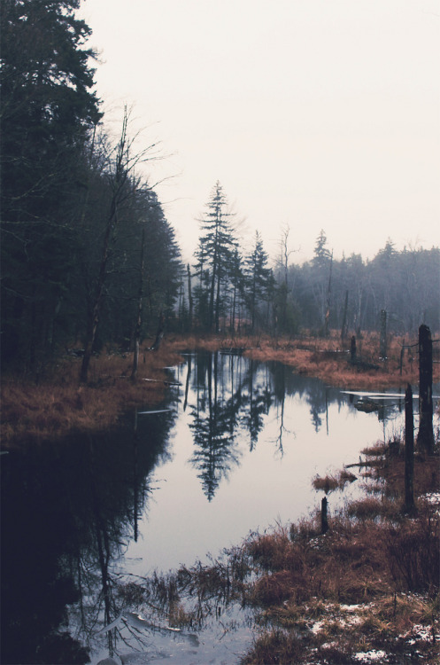 brutalgeneration:   (by Emily Boyer Photography)