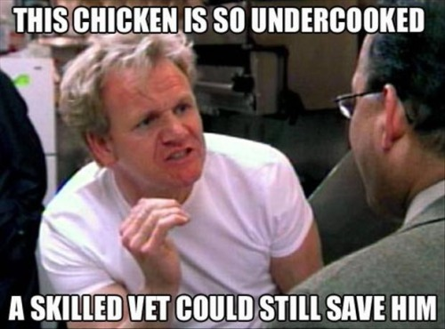 The chicken is undercooked