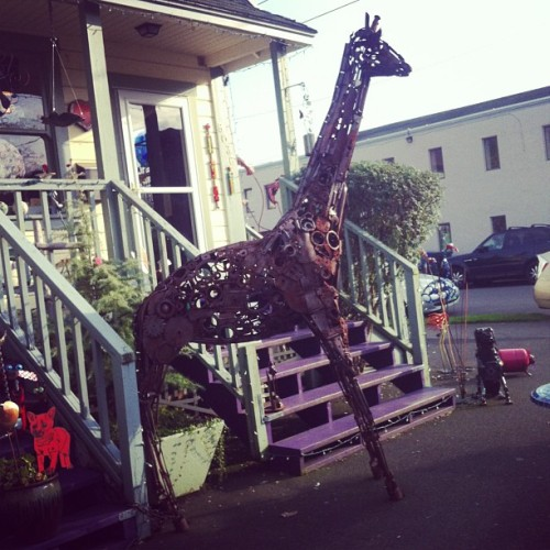 Antiquing w/my aunt. Massive giraffe sculpture. $5250. Any takers?