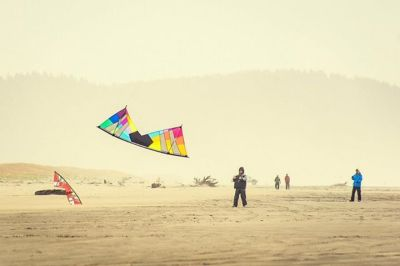 Longbeach, WA #beach #kite #windy