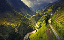 mucholderthen:  Rice terraces in Mu Cang ChaiNorth Vietnamby Thang Soi (500px)