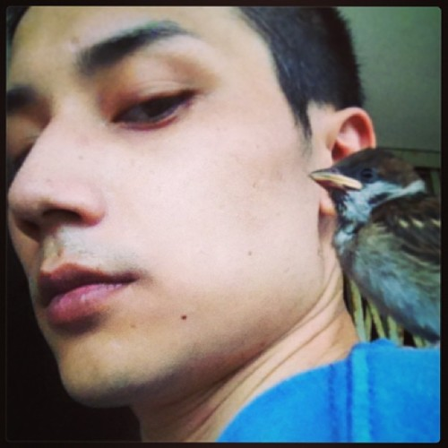 So amazin' while cleanin' the garden… Baby bird lyin' on my shoulder!!! What a great day!  (at Kak Tin Village 隔田村)