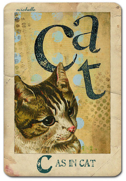 """C"" as in Cat by Barbiegoose on Flickr."