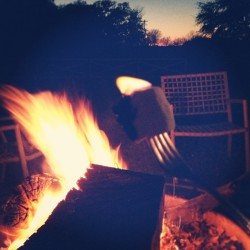 RostyToasty! (at LBJ Ranch)