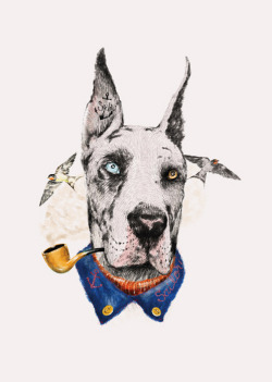 septagonstudios:  Dogooder MR. GREAT DANE