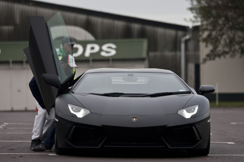 Just get inside me already Starring: Lamborghini Aventador (by jasoncornish)