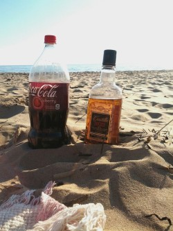 vanillapuddingx:  Getting drunk on the beach with my ride or die.