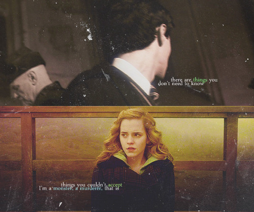Harry potter is a lifestyle the ship of tom marvolo riddle and hermione - Hermione granger fanfiction ...