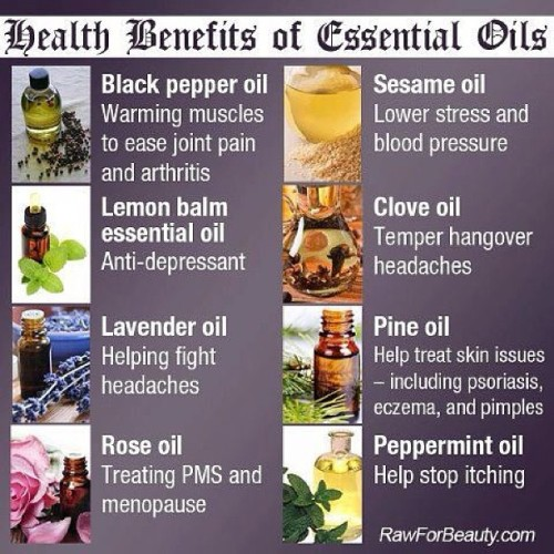 Benefits of essential oils. #zamalek #cairo #egypt #revive #revivembs #mind #body #spirit #health #wellness #oils #sesame #clove #lemon #pine #lavender #rose #peppermint www.revivembs.com