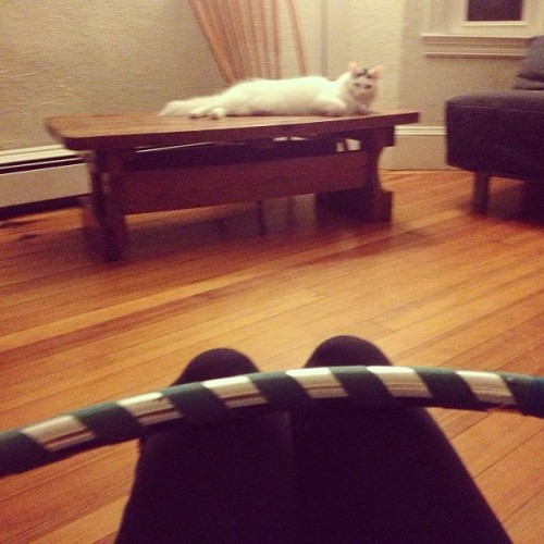 Hooping with my cat. Two of my fav things. #singlegirlproblems #hulahoop #love