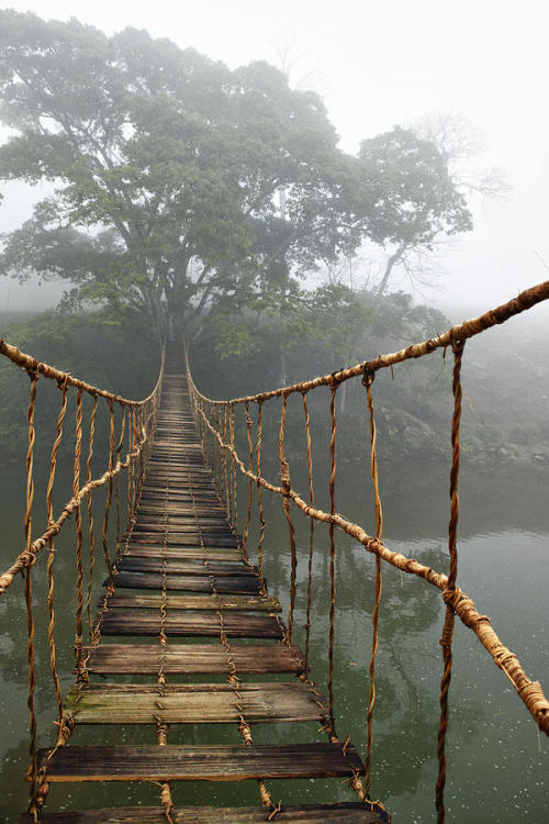Rope Bridge Photograph Sapa, Vietnam by Skip Nall