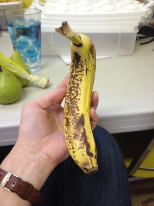 Here, look at this crooked banana.