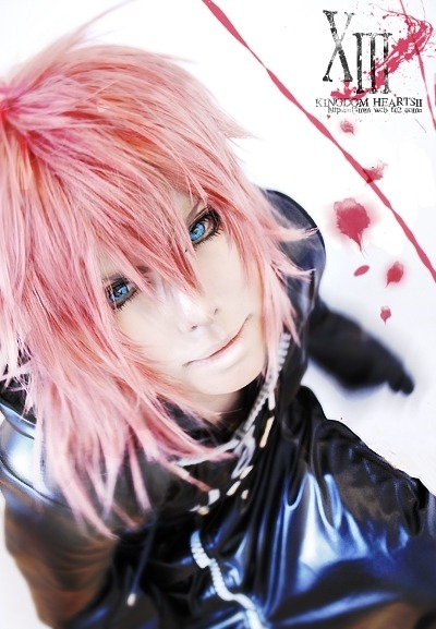 onii-chama:  Kingdom Hearts Marluxia CN: touga