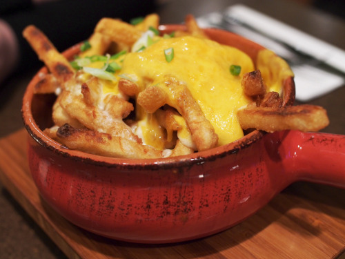 gastronomyfiles:  Curry Cheese Fries (by Chun's Pictures)