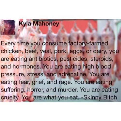 #vegan #factoryfarms #skinnybitch #youarewhatyoueat #animalrights