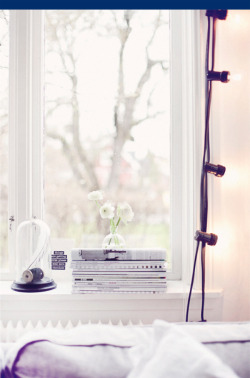 via nikki friday theme: white simple flowers at the window.  at a concept by anna.