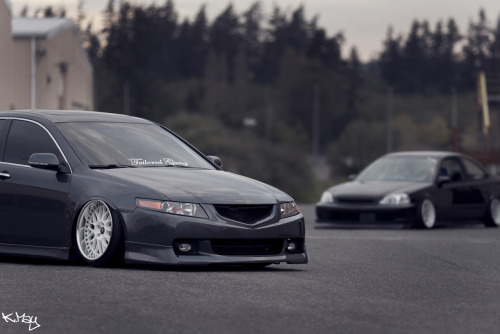 horny-for-hondas:  which one?