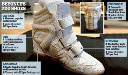 Beyonce's Crazy Zoo Shoes She was going to add blood from the last unicorn in existence, but decided red was tacky.