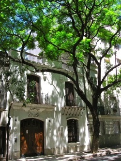 notesfromabroadblog:  casa in the shade